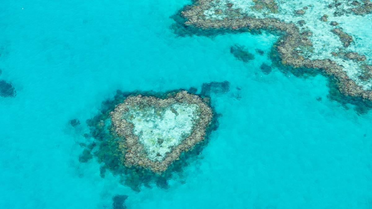 The famous Heart Island on the Great Barrier Reef at the Whitsundays. Pictures: Michael Turtle