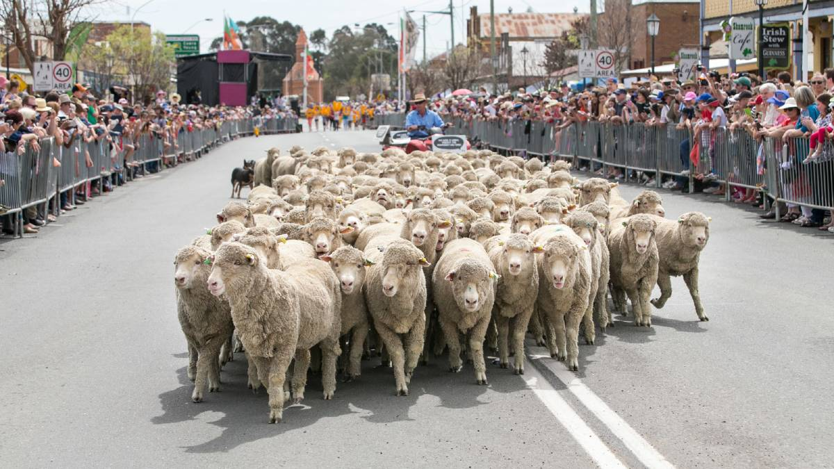 Boorowa Community Bank secures Irish Woolfest naming rights