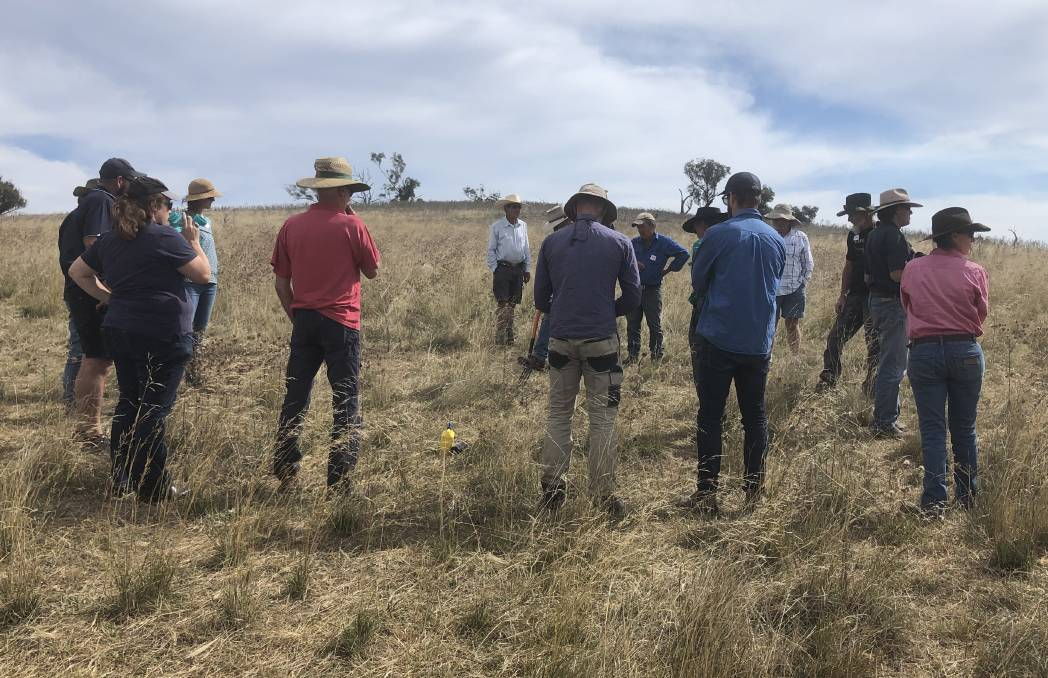 The last grazing meeting held at Bill and Sharee Darmody's property in March 2021.